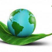 CONOSCENZE PROFESSIONALI E PRINCIPI MORALI NELLA GLOBALIZZAZIONE